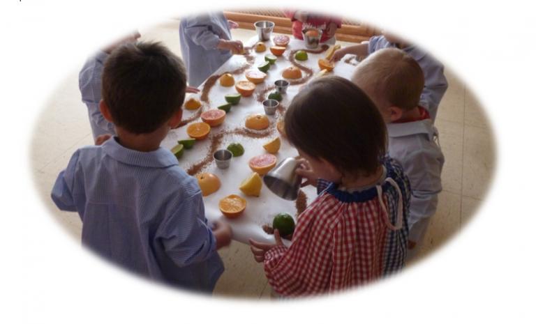 habitos saludables niños sarai alonso nutrición online