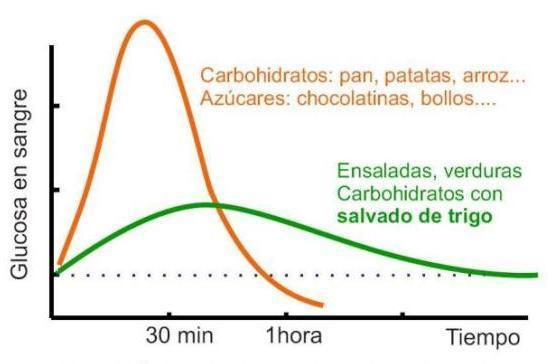 diabetes mellitus nutrición sarai alonso